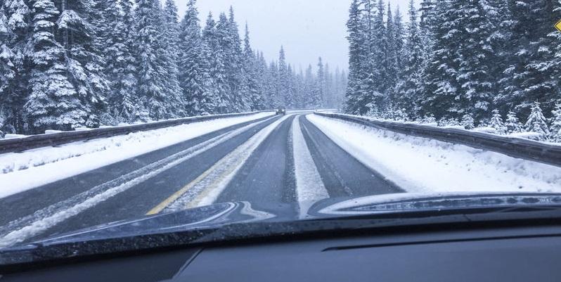 thanksgiving and fatal car accidents daniel r rosen